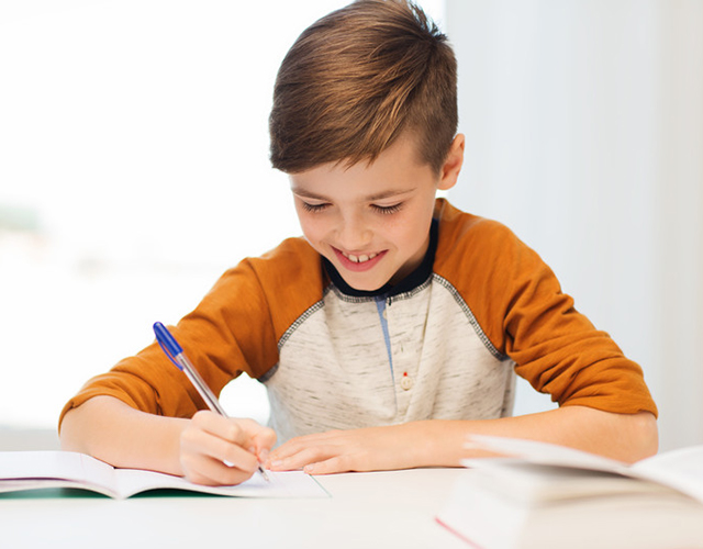 Daily Lesson Plan for the Struggling Writer and Speller